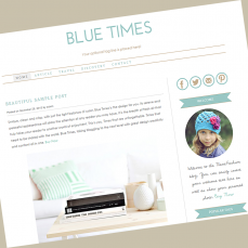 wordpress-theme-bluetimes